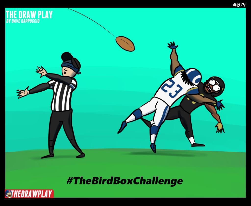 2019-01-21-BirdBoxChallenge