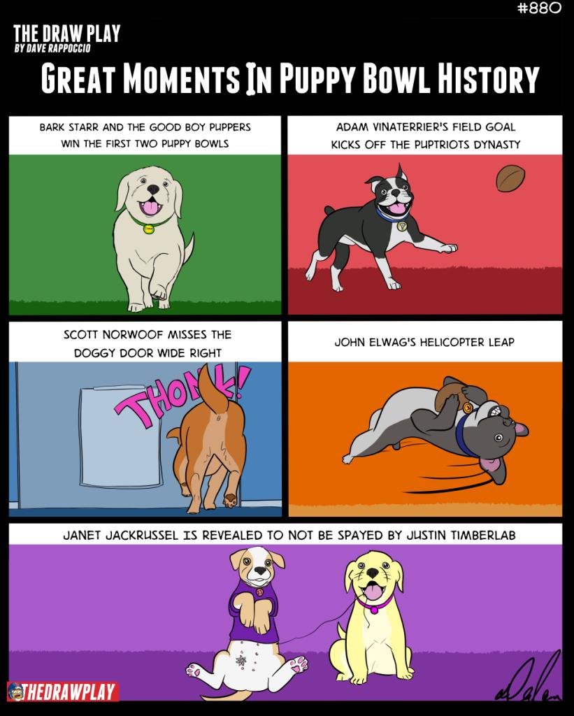 2019-02-01-PuppyBowl2019